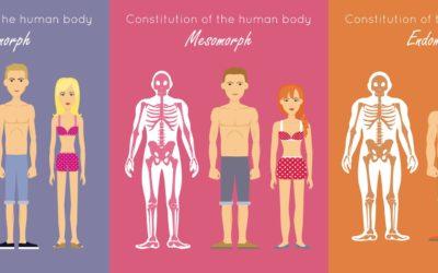 Conoce Tu Tipo de Cuerpo o Somatotipo